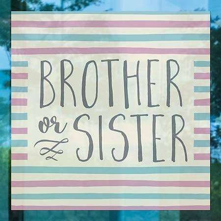 16x16 CGSignLab Square Clear Window Cling Brother or Sister Inner CircleGender Reveal