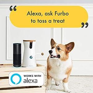 Best Wifi Pet Video Camera USA