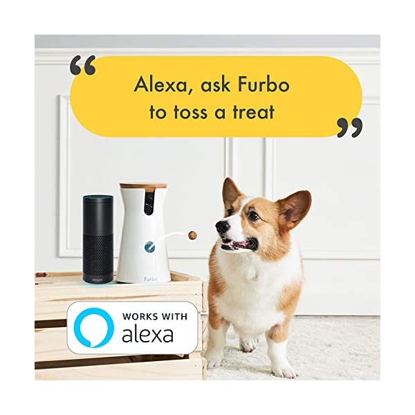 Furbo Dog Camera: Treat Tossing, Full HD Wifi Pet Camera and 2-Way Audio, Designed for Dogs, Compatible with Alexa (As… 6