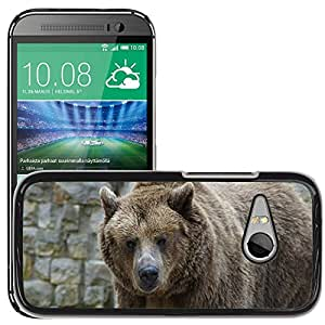Super Stella Slim PC Hard Case Cover Skin Armor Shell Protection // M00145743 Bear Brown Bear Grizzly Grizzly Bear // HTC One Mini 2 / M8 MINI / (Not Fits M8)