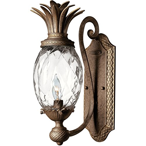 Hinkley 4140PZ Leaf, Flower, Fruit One Light Wall Sconce from Plantation collection in -
