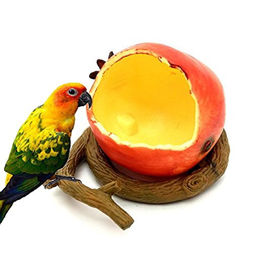 STAR-TOP Birds Feeder Bowl, Bird Food Feeding Bowl Feed Cup for Small Parrots Cockatiels Conure Hamster Small Animal Drinking Water Container for Birds Cage Accessories (Pomegranate)
