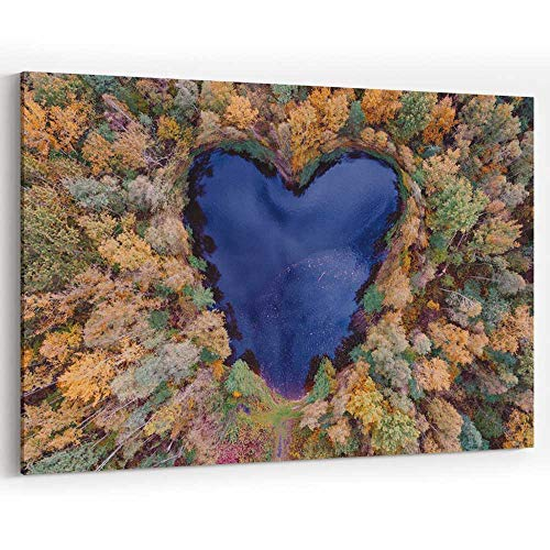 Aerial View of Heart Shaped Pond Canvas Art Wall Dcor Painting Wall Art Picture Print on ()