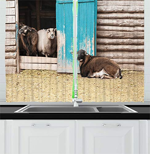 Ambesonne Farm Animal Kitchen Curtains, Agriculture Photo with Cute Sheep in Rustic Wooden Cottage with Painted Door, Window Drapes 2 Panel Set for Kitchen Cafe, 55 W X 39 L Inches, Multicolor