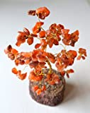 FENGSHUI RED CORAL GEMSTONE MONEY TREE-FOR ENORMOUS WEALTH & PROSPERITY