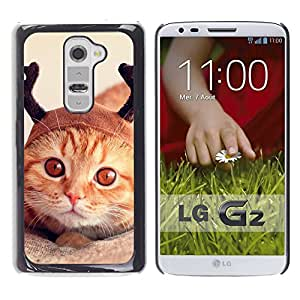 Vortex Accessory Carcasa Funda PARA LG G2 For - Selkirk American Shorthair Orange