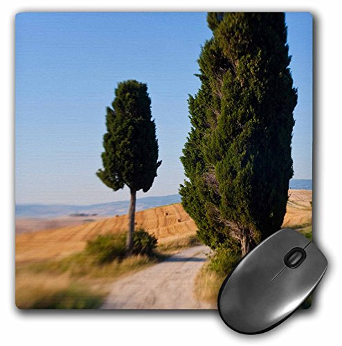 danita-delimont-italy-winding-road-val-d-orica-tuscany-italy-mousepad-mp-227671-1
