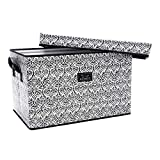 SCOUT Rump Roost Large Lidded Storage Bin, Collapsible and Stackable, Reinforced Side Handles and Bottom, Water Resistant, Black Knight