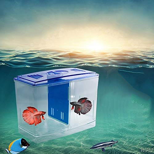 Pukido Aquarium Incubator Fish Tank Clear Separative Box Breeding Feeding Hatchery Case - (Color:, Size: M)