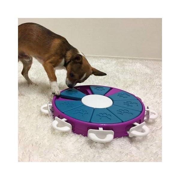 Nina Ottosson Dog Twister Activity Toy 2