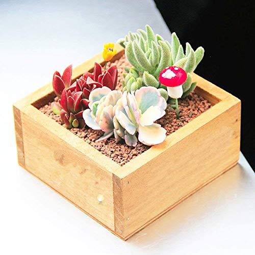 Amazon.com: Hosaire Wooden Flower Pots Box Holder Modern Resin Succulent Planter Plant Container Box Plant Containers Nursery Plant Desktop Storage Box ...