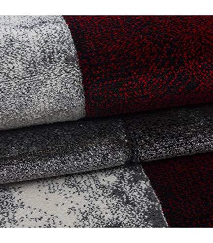 Designer Teppich Modern Kariert Muster Konturenschnitt Schwarz Grau Grau Grau Rot - 200x290 cm B076ZLH3N3 Teppiche & Lufer fffd20