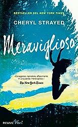 Meraviglioso (Italian Edition)