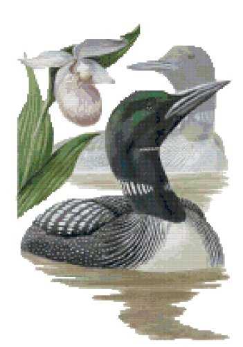 Minnesota State Bird (Common Loon) and Flower (Pink and White Lady's Slipper) Counted Cross Stitch Pattern
