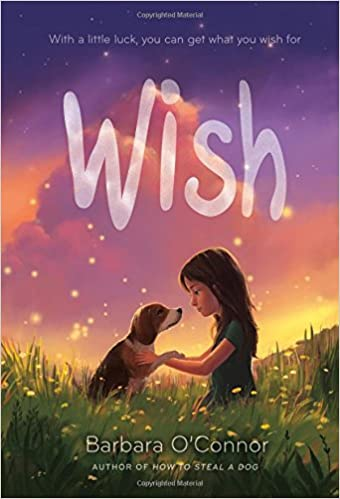 Image result for wish book