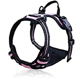 Best Dog Leash For Pullings - Rabbitgoo No-Pull Dog Harness Adjustable Pet Harness Outdoor Review