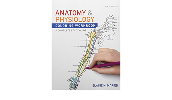 - Amazon.com: Anatomy And Physiology Coloring Workbook And Essentials Of  Human Anatomy & Physiology Plus MasteringA&P With EText Package  (9780321807052): Marieb, Elaine N.: Books