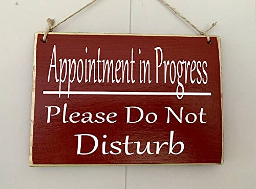 Appointment In Progress...Please Do Not Disturb 8x6 (Choose Color) In Session Custom Massage Spa Wood Sign Shhh Meeting Wall Decor by Prim and Proper Decor (Image #2)