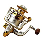 Boleno New 10BB Ball Bearing Saltwater/ Freshwater Sea Fishing Spinning Reel 5.5:1 Hot