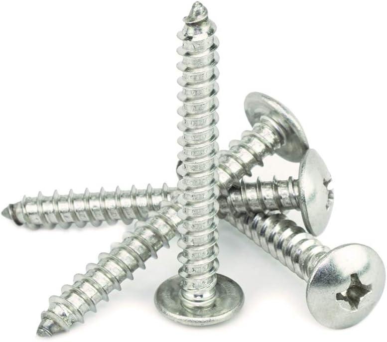 #12 x 2 Truss Head Phillips Sheet Metal Screws Self Tapping,18-8 Stainless Steel Full Thread Qty 100 by Bridge Fasteners