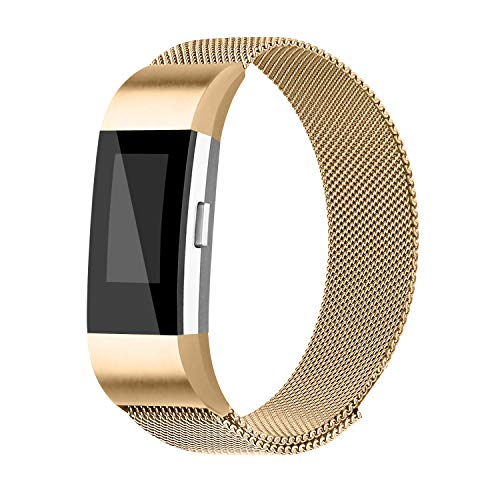 Steel Replacement Band - iGK Replacement Bands Compatible for Fitbit Charge 2, Stainless Steel Metal Bracelet with Unique Magnet Clasp Gold Large