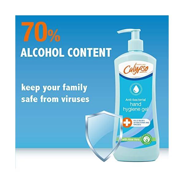 Calypso Anti Bacterial Hand Hygiene Sanitiser Gel 70 Alcohol Kills 9999 Of Bacteria Viruses 500 Ml Calb11