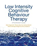 img - for Low Intensity Cognitive-Behaviour Therapy: A Practitioner's Guide book / textbook / text book