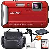Panasonic DMC-TS30R DMC-TS30 TS30 LUMIX Active Lifestyle Tough Camera (Red) 16GB 6PC Accessory Bundle Includes SanDisk Ultra 16GB Class 10 SDHC Memory Card (SDSDUN-0016G-G46) + MORE