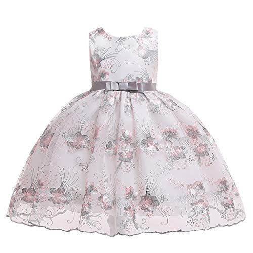 RAINED-Little Girls Sleeveless Lace Embroideried Princess Party Performance Formal Tutu Dress Dressy Flower Girl Dress Gray]()