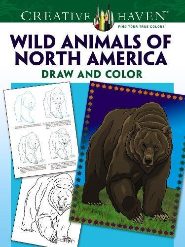 Creative Haven How to Draw Wild Animals of North America (Adult Coloring) [Rechlin, Ted] (Tapa Blanda)