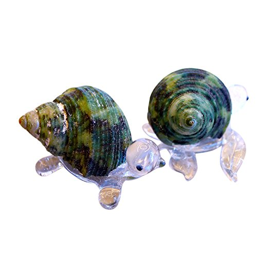 (Sansukjai 2 Pcs Turtle & Sea Turtle Figurines from Clear Blown Glass Mix Natural Green Shell Beach Animals Collectible Gift Home Decor#8)