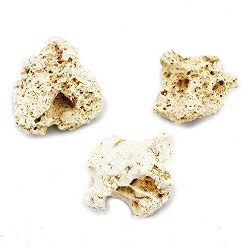 /10/cm Set da pezzi Zanzibar Rock Taglia S 7/