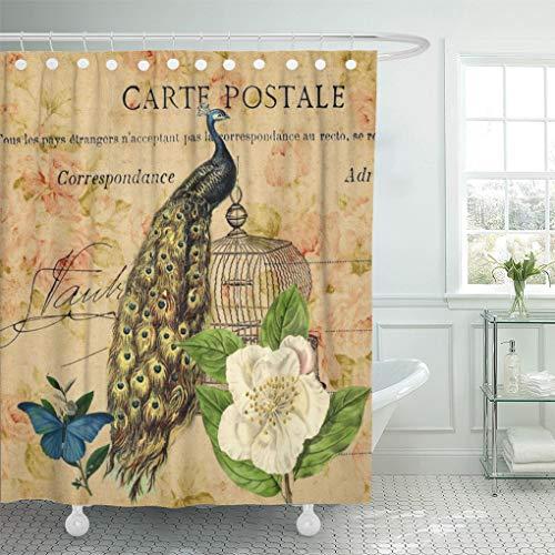 Semtomn Shower Curtain Nouveau French Botanical Camellia Birdcage Vintage Peacock Feather Peafowl 66