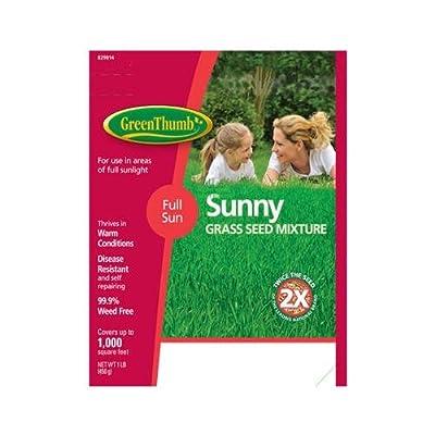 Barenbrug Usa GT1SUN Lb. Bare Spot Sunny Grass Seed