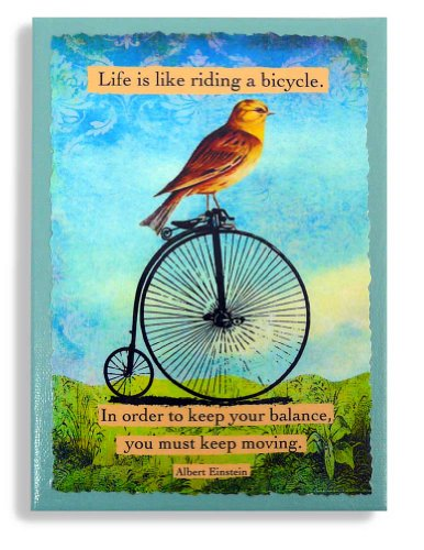 is Like Riding a Bicycle Quote by Einstein, 5x7 Canvas Wall Art - Bird on Bike ()