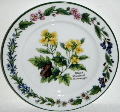 Royal Worcester Herbs Green Trim Bread & Butter Plate Black Mustard -
