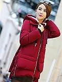 Feilongzaitianba Winter Jacket Women Military Coats Plus Size Cotton Hooded Parkas For Women Winter Coat Mujer Z008 Wine Red 5Xl