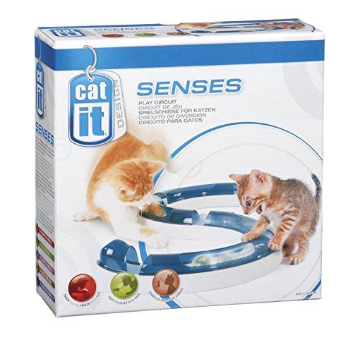 Catit Design Senses Play Circuit 51rMMkSAsCL
