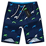 Men's Quick Dry Boardshorts Bathing Suits Swimming Trunks Tropical Island Beach Shorts, L(28-29), Seagull
