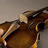 Fishman V-400 Concert Series Professional Violin