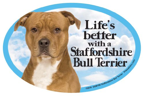Prismatix Decal Cat and Dog Magnets, Staffordshire Bull Terrier Boston Terrier Pit Bull