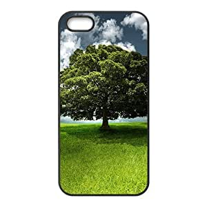 Big Banyan Tree Cell Phone Case for iPhone 5c