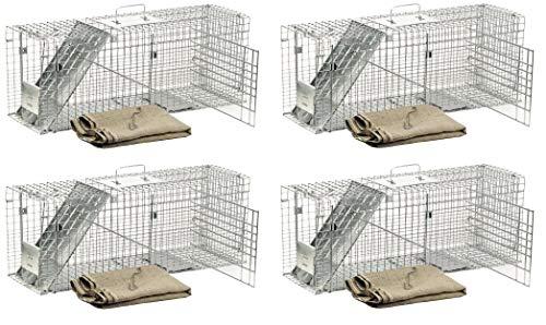 - Havahart 1099 Feral Stray Cat Rescue Kit (4 Kits)
