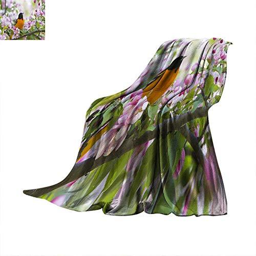 Angoueleven Soft Blanket Microfiber Baltimore Oriole Throw Blanket 50