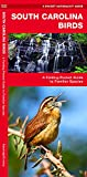 South Carolina Birds: A Folding Pocket Guide to Familiar Species (Wildlife and Nature Identification)