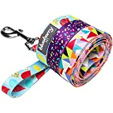 Blueberry Pet 5/8-Inch by 5-Feet Adorable Triangles in Colorful Spring Pastels Dog Leash, Small