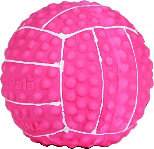 Coastal Toy Lil Pals (Li L Pals Latex Volleyball Dog Toys)