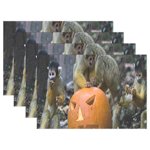 NMCEO Place Mats Halloween Monkey Personalized Table Mats for Kitchen Dinner Table Washable PVC Non-Slip Insulation 1 Piece -