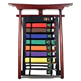 Ace Martial Arts Supply Wall 10 Levels Mountable