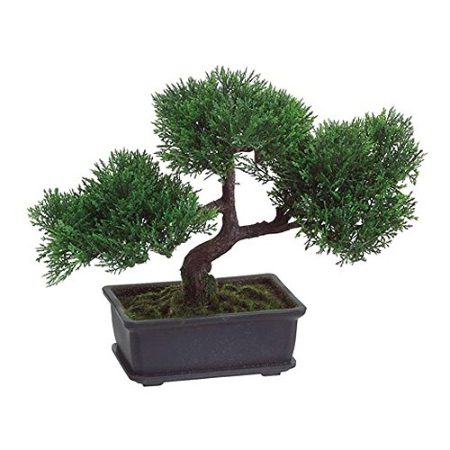 T-Trove Artificial Japanese Cedar Bonsai Tree 9 inch tall by T-Trove